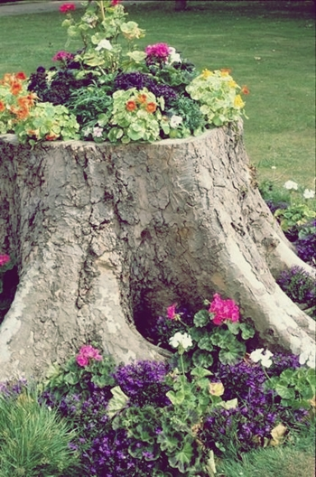 recycled stump planter